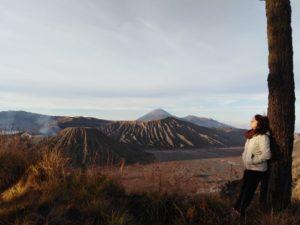 Mount Bromo Ijen Crater and Malang City Tour 4 Days